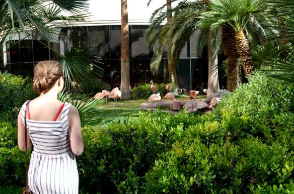 Zara Dress Vintage Bag Flamingo Hotel Las Vegas 16