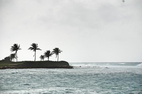 jamaica10